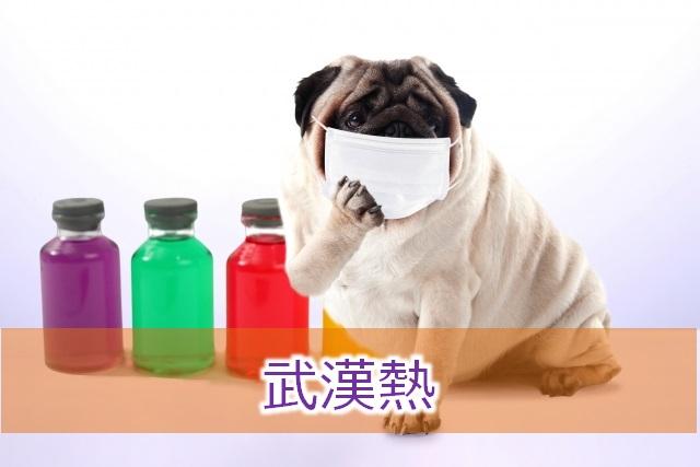 新型肺炎が奈良で発生したみたいに言うなよマスコミ