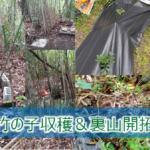 竹の子取りと裏山開拓