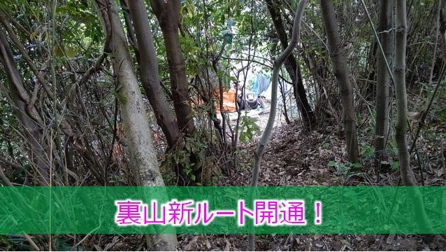 裏山新ルート開通!